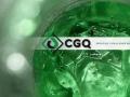 C G Quimica