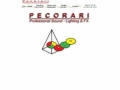 Pecorari Professional Sound Lighting & Fx